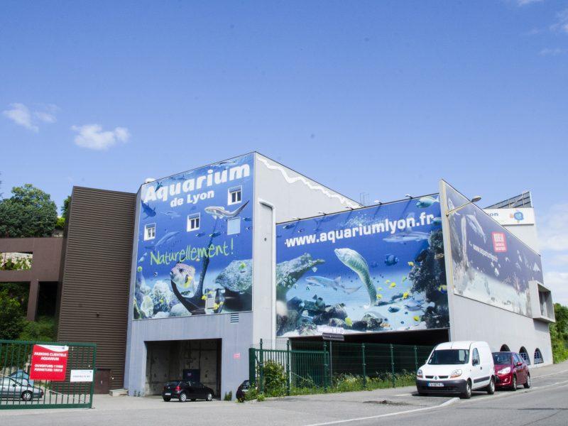 Aquarium de Lyon : arrière
