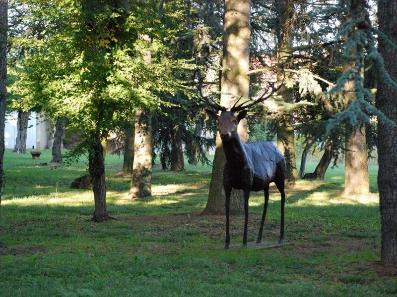 Château Talluy : le parc